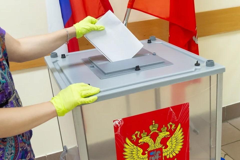 В Петербурге не станут прекращать обучение школьников во время выборов 17 и 18 сентября.