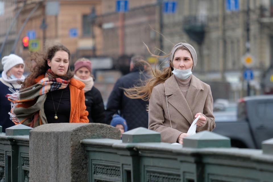 Сильный ветер поднимется в Петербурге 8 сентября